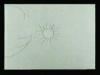 Taller animación_NEW 001